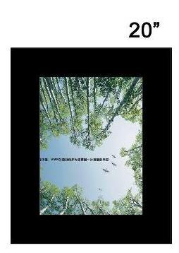 20 digital poster